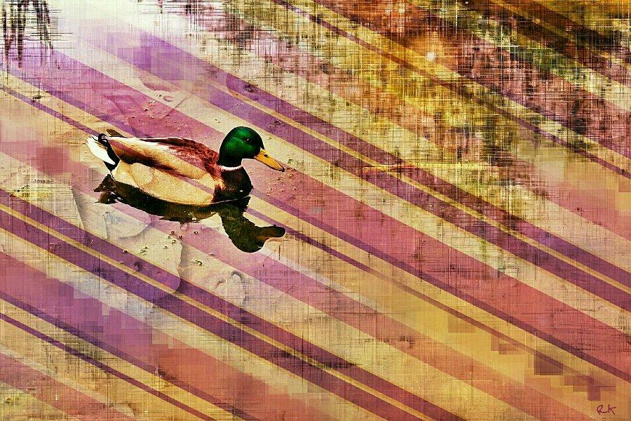 Königreich einer Ente | Digital Painting in der RK-Gallery.Berlin